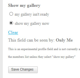 gallery-off-on